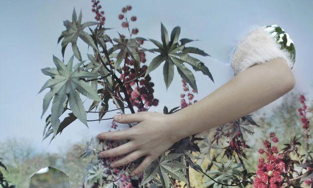 """Für unser zögerliches Verhältnis zur Natur findet die slowenische Künstlerin Vanja Bucan in ihrer Serie """"Camouflage"""", 2015, wunderschöne Bilder."""