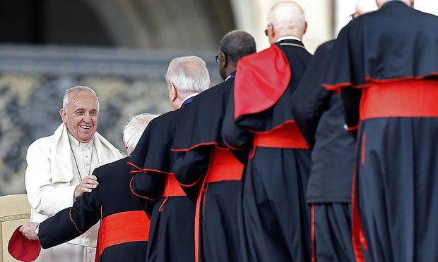 Papst Franziskus bei einer Audienz im Vatikan. Viele Bischöfe sehen Gesprächsbedarf bei Themen über die kirchliche Familienpolitik.