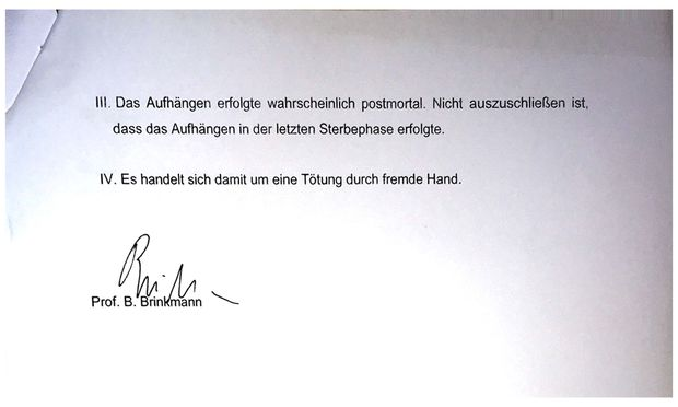 Auszug aus der Zusammenfassung des Brinkmann-Gutachtens.