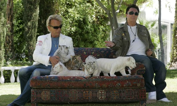 Seit 1997 betreiben Siegfried und Roy einen Zoo zur Erhaltung und Fortpflanzung der weißen Tiger und Löwen.