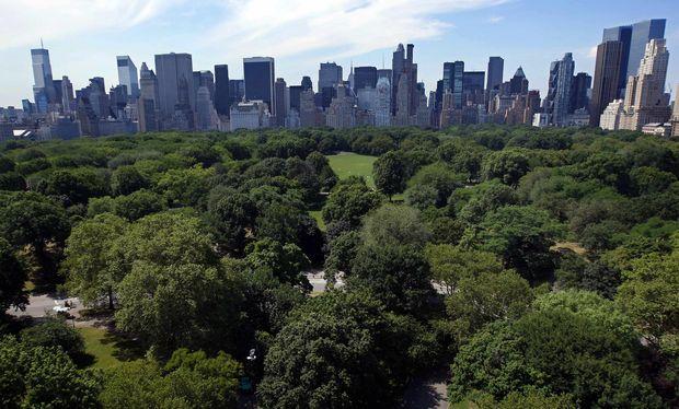 New York Skyline, Central Park South