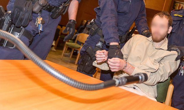 Der Angeklagte am Mittwoch vor Gericht / Bild: APA/EXPA/JAKOB GRUBER