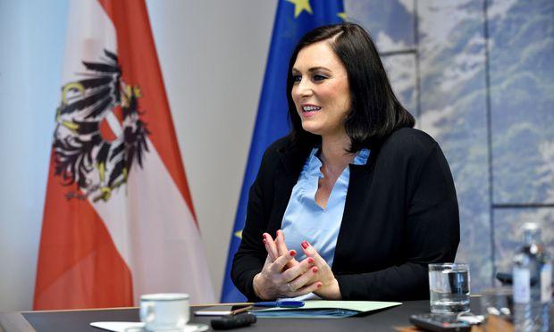 Ministerin Köstinger Wünscht Sich Karenzregelung Für Politiker