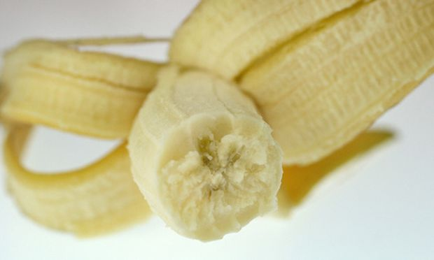 Halle Bananenkoenigs