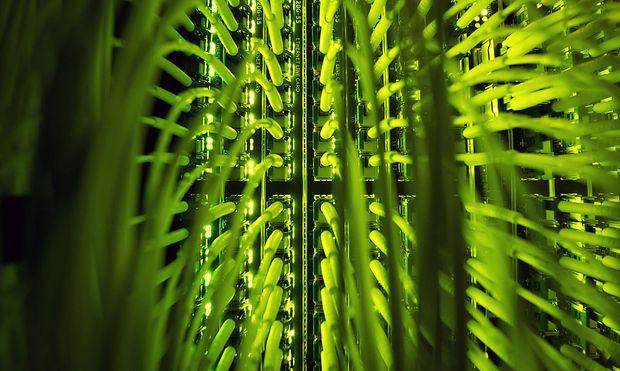 Netzausbau - Internet