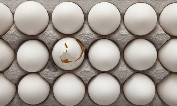 Woher kommen die Eier, die in der Lebensmittel- industrie und in Großküchen verwendet werden?