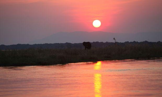 Der lange Tag in Chickwenya endet für uns mit einer Bootsfahrt auf dem Sambesi – überirdischer Sonnenuntergang inklusive.