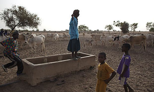 Die Sahel-Zone ist zum dritten mal in sieben Jahren von einer Hungerkatastrophe betroffen.