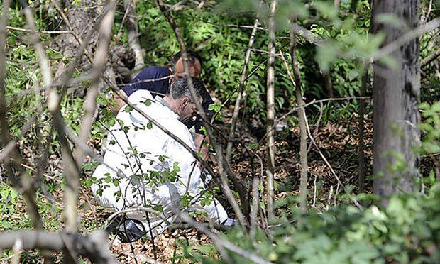 Die Leiche des Mannes wurde im Wienerwald bei Gablitz gefunden