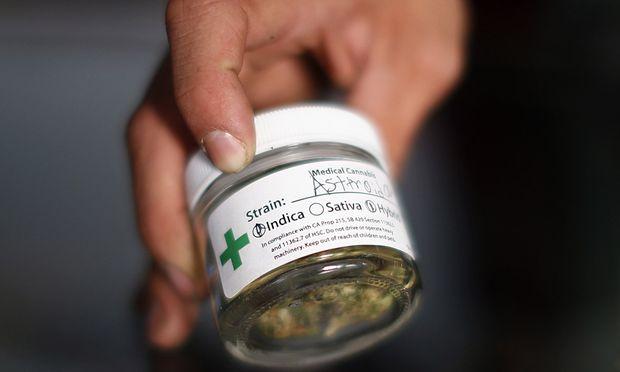 A volunteer displays cannabis buds at the La Brea Collective medical marijuana dispensary in Los Angeles