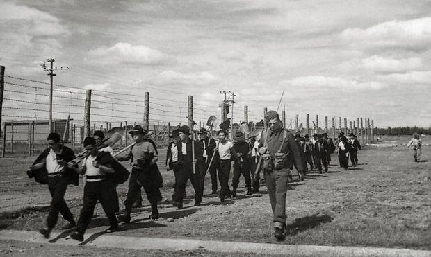 Kriegsgefangene Japaner im Lager Featherston
