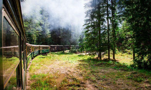 Ioana, die alte Dampflok. Früher holte sie Holz aus den Wäldern des Maramureș-Gebirges, heute befördert sie Touristen.