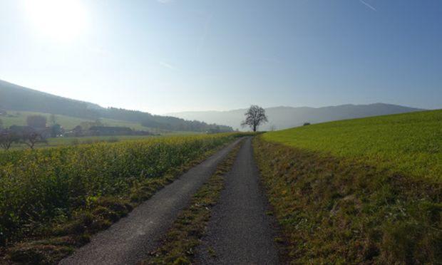Radtour südliches Waldviertel (Spitz-Yspertal).