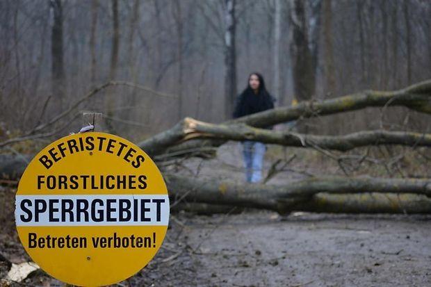 Waldsperre in Klosterneuburg