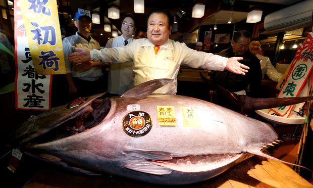 """212 Kilogramm Thunfisch für 600.000 Euro ist schon ein """"bisschen teuer"""""""
