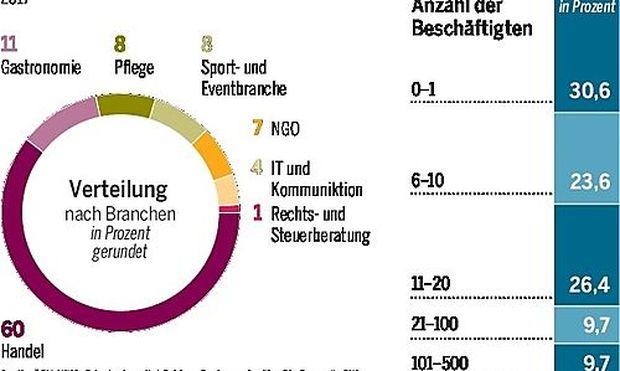 Grafik: Franchising in Österreich im Jahr 2017.