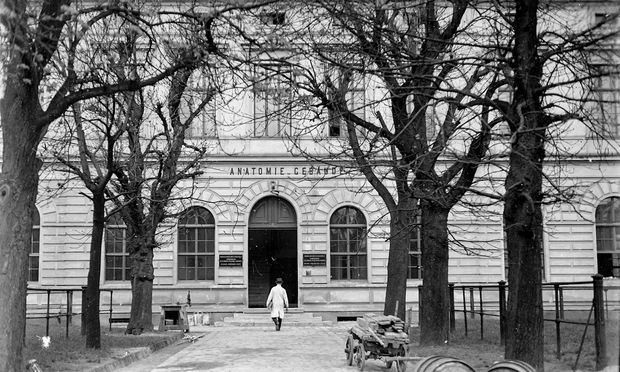 Historische Aufnahme der Vetmed.