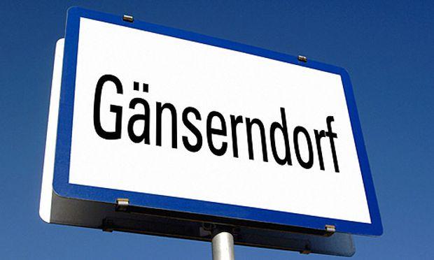 Partnersuche gänserndorf