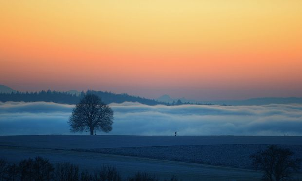 Dichter Nebel über dem Bodensee.