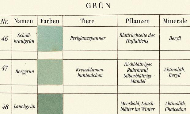 Ein Ausschnitt aus einer Farbtafel, die der Pflanzenmaler Patrick Syme zu den Beschreibungen des deutschen Mineralogen Abraham Werner erstellte.