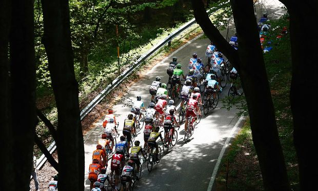 Giro-Tross im Wald