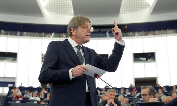Europas Königsmacher? Guy Verhofstadt, Fraktionschef der Liberalen im EU-Parlament.