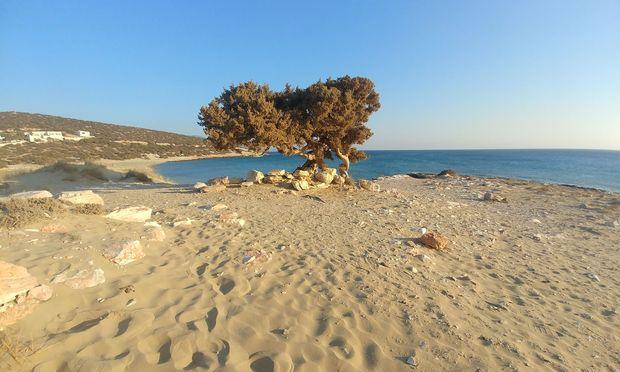 Die Badeplätze im Süden, hier Pirgaki: ewig lange Sandstrände.