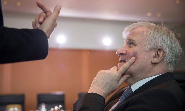 Der deutsche Innenminister Horst Seehofer war massiver Kritik wegen des Entwurfs eines Verfassungsschutzgesetzes ausgesetzt.