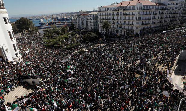 Proteste in Algier.