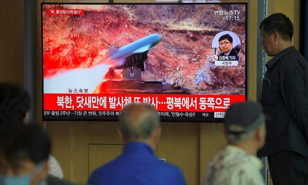 Kim plant Übung zu