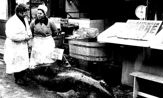 Naschmarkt im Jahr 1971