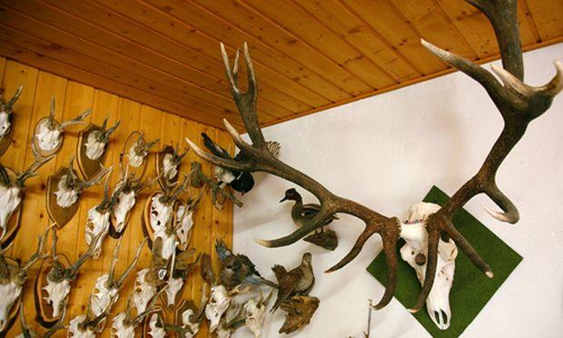 Jagdgesellschaft Geschaefte unterm Hochstand