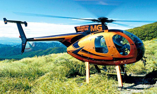 """Ein Helikopter rettete zwei US-Amerikanerinnen, die sich in einem Nationalpark in Neuseeland verirrt hatten, weil der Pilot die """"Help""""-Zeichen aus Steinen, Ästen und Farnblättern entdeckte."""
