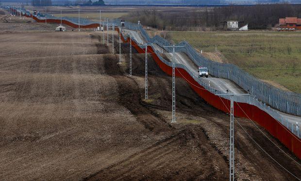Ungarische Polizisten patrouillieren an der ungarisch-serbischen Grenze.