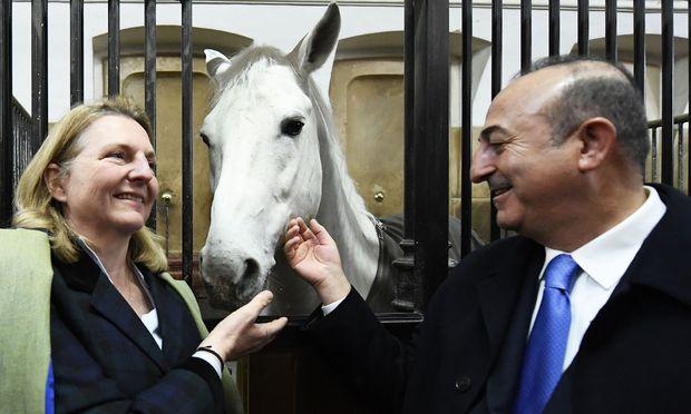 Außeministerin Kneissl und ihr türkischer Amtskollege Mevlut Cavusoglu.