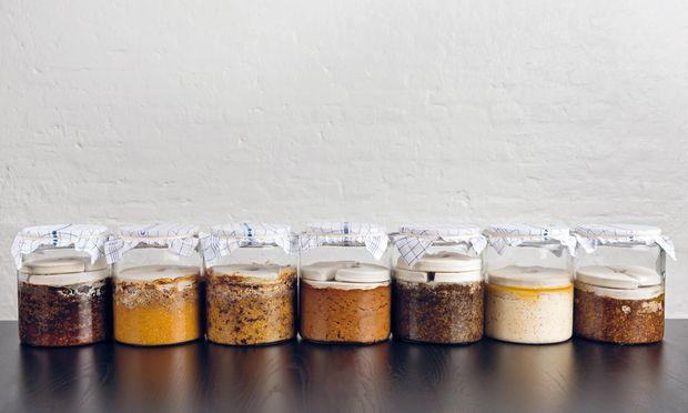 Aufstellung. Unter der Miso-Vielfalt des Noma ist zum Beispiel Gelbes Erbsenmiso, Peaso genannt.