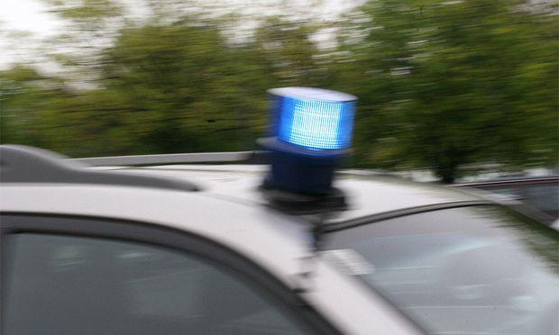 Beschuldigter Wiener DonauinselMord festgenommen
