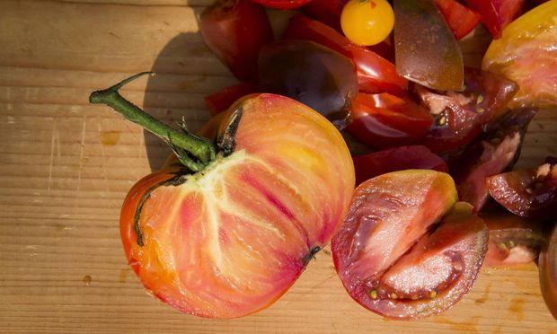 an assortment different varieties of tomatoes agriculture salad chopped vegetable no people fr