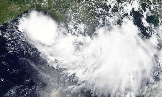 Der Tropensturm