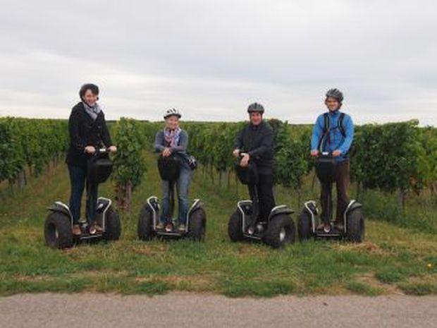 Wein Regionalerlebnis Sonnenland Mittelburgenland