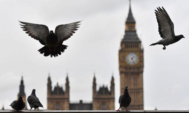 Die britische Rothaarige Zara Du Rose wird von ihrer haarigen Fotze gefickt und mit Sperma beladen