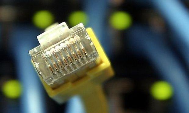 ** ARCHIV **  Netzwerkkabel und Stecker am 18. Dezember 2006 in Frankfurt am Main. Der Bundesrat hat