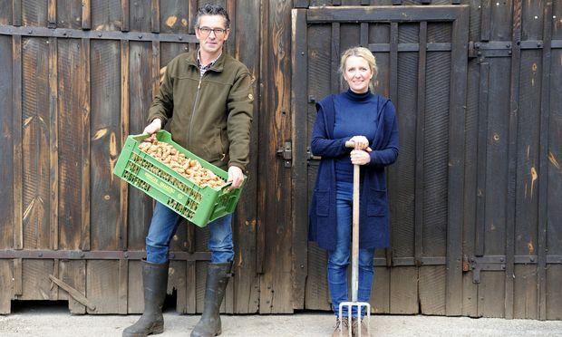 Johannes Wiesmayer mit seiner Frau Lydia und dem Topinambur. Die Knolle ist winterhart – dafür nicht besonders lagerfähig.