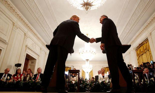 US-Präsident Trump und Polens Präsident Duda im Weißen Haus