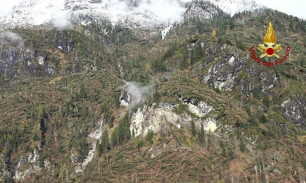 Ein Bild aus der Provinz Belluno, viele Bäume hielten dem Sturm nicht stand.