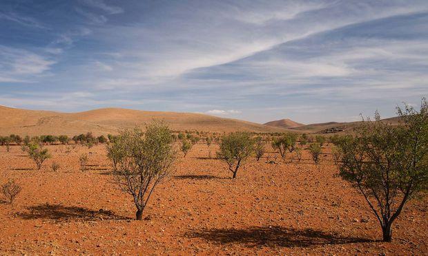 Im Anti-Atlas: So karg und trocken die Gegend erscheint, so ist sie doch bewirtschaftet und besiedelt. Rechts: der Agadir (Vorratsspeicher) Tasguent.