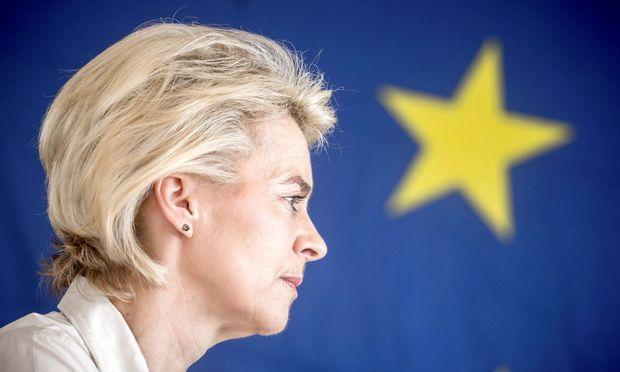 374 EU-Abgeordnete muss Ursula von der Leyen am kommenden Dienstag im Europaparlament von sich überzeugen, um Präsidentin der Europäischen Kommission zu werden.