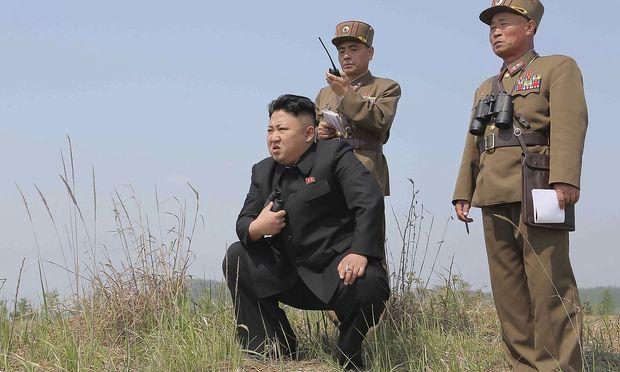 Abbau von Atomtestgelände hat begonnen