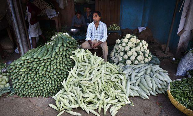 Südindien ist das Ursprungsland der Gurke. Und das Land der Gewürze.