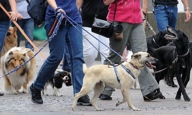Protest gegen neues Hundegesetz